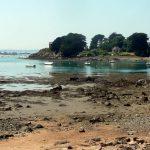 Sortie à l'île de Bréhat pour les Arpètes Bretons 20