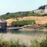 Sortie à l'île de Bréhat pour les Arpètes Bretons 23