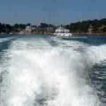 Sortie à l'île de Bréhat pour les Arpètes Bretons 31