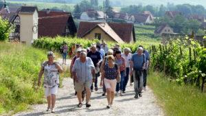 Les P46 en Alsace pour leur 55ème anniversaire 5