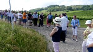 Les P46 en Alsace pour leur 55ème anniversaire 8