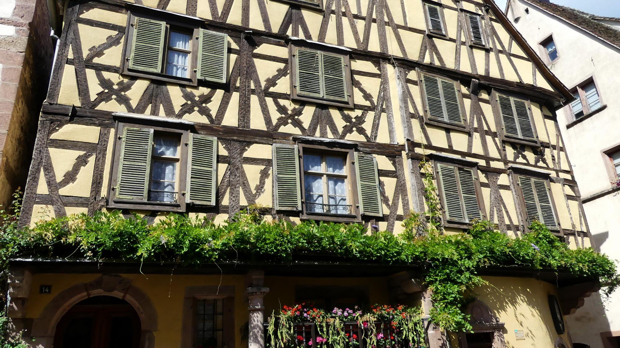 Les P46 en Alsace pour leur 55ème anniversaire 33