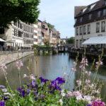 Les P46 en Alsace pour leur 55ème anniversaire 78