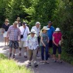 Les P46 en Alsace pour leur 55ème anniversaire 100