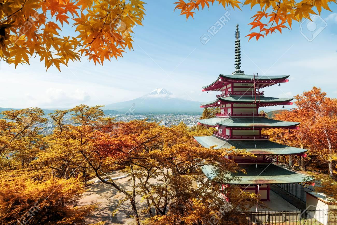 JAPON - NOVEMBRE  2020 1