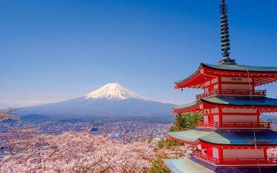 JAPON – NOVEMBRE  2020